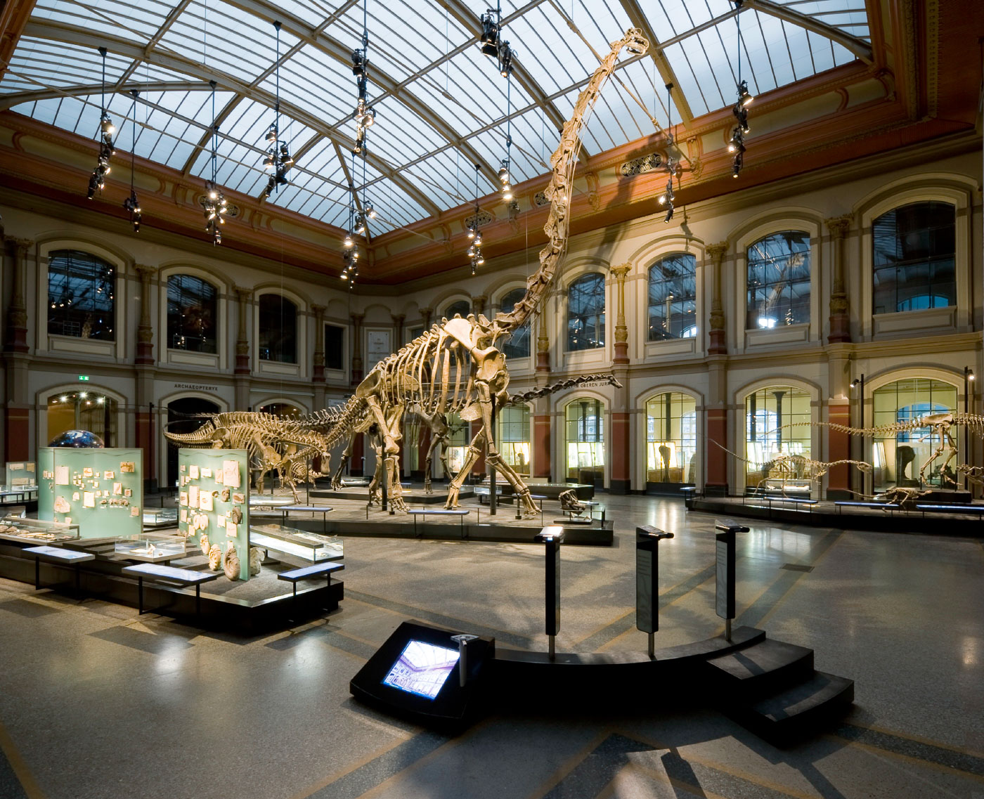 Foto: Antje Dittmann - Museum für Naturkunde Berlin