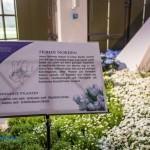 dresdnerfruehlingpalais