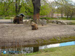 tierparkberlin