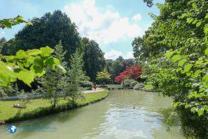 englischergarten