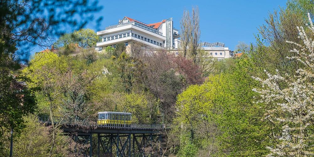 Große Entdeckertour - Schiff, Bus & Bergbahn - Bild 6