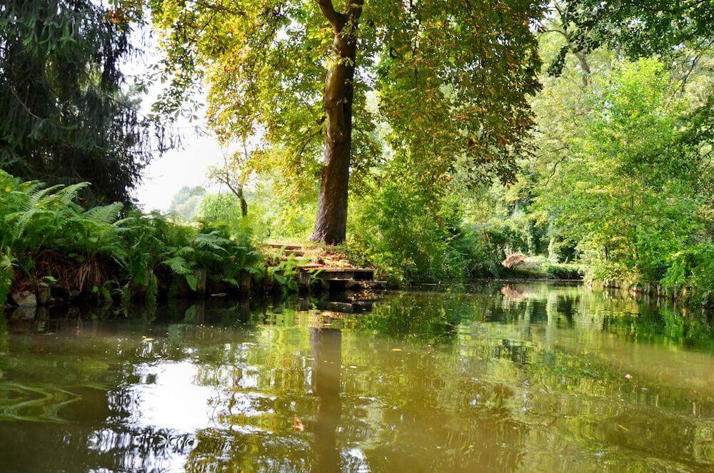 Ausflug in den Spreewald mit Kahnfahrt - Bild 2