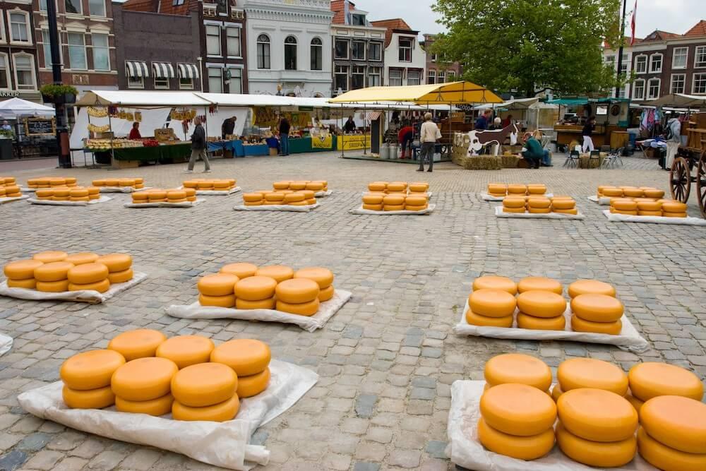Ausflug Käsemarkt Alkmaar & Besichtigung Windmühlen - Bild 3