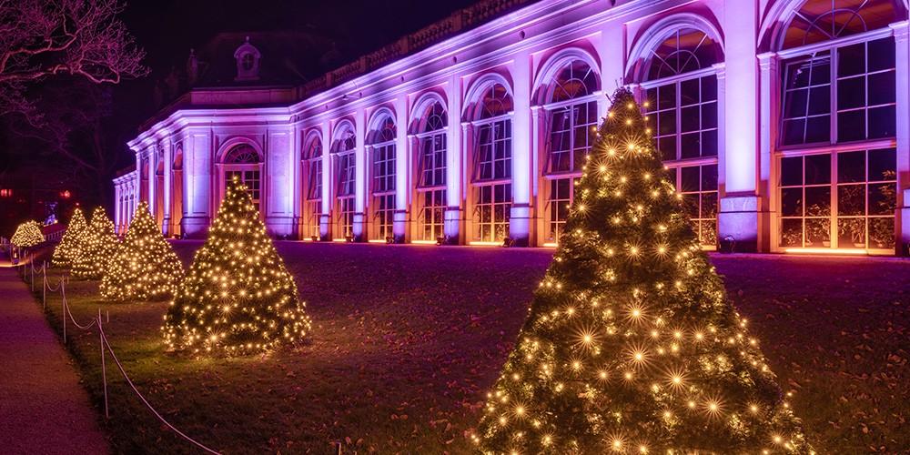 Eintritt Christmas Garden Pillnitz + Rundfahrt im Weihnachtsbus - Bild 3