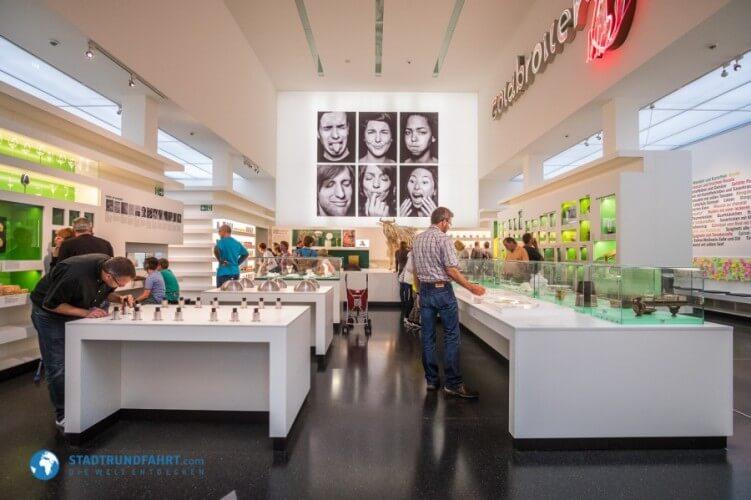 Deutsches Hygiene-Museum - Bild 2