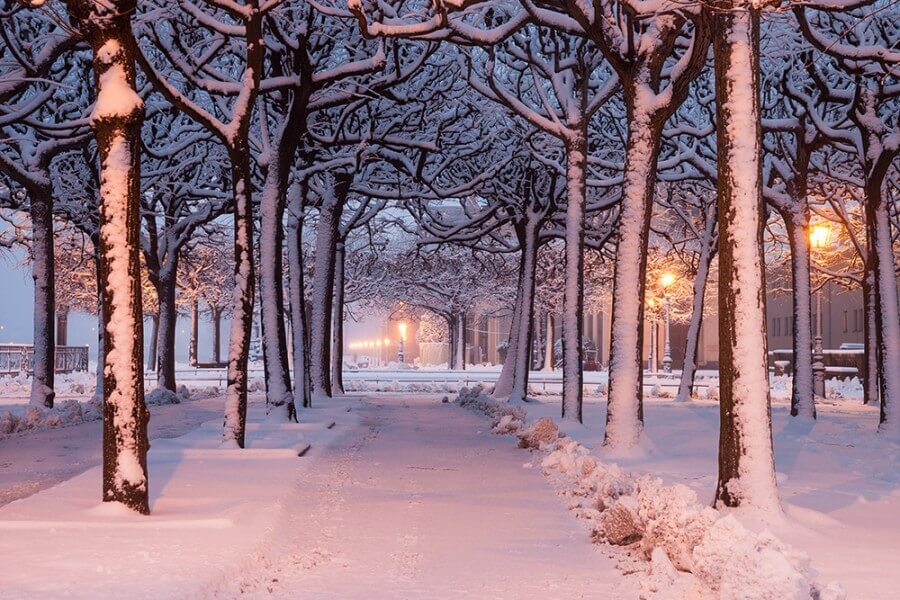 Weihnachtsspecial: Adventsrundgang plus 2-Tages-Ticket Große Stadtrundfahrt - Bild 3