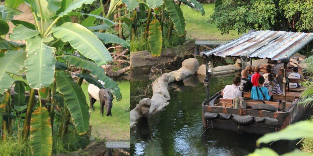 Eintritt Zoo Leipzig - Bild 3