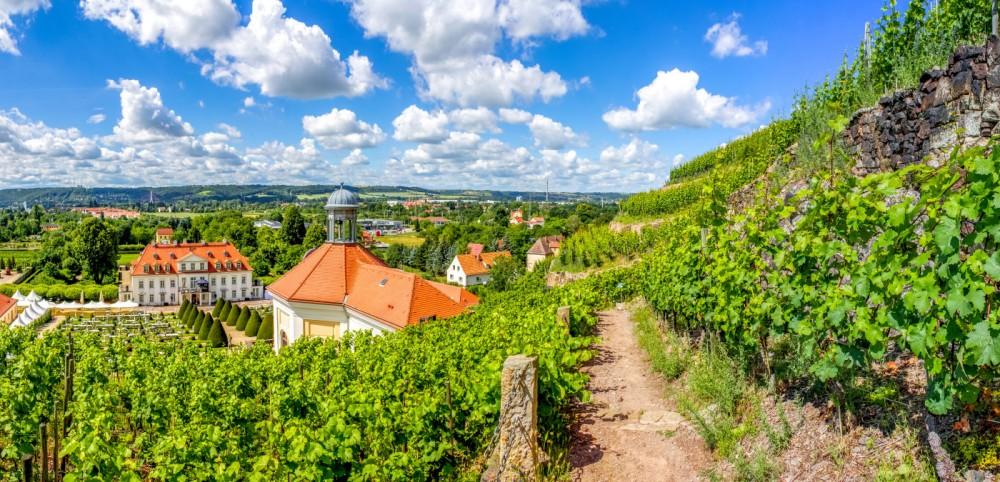 Erlebnis Sächsische Weinstraße - Bild 1