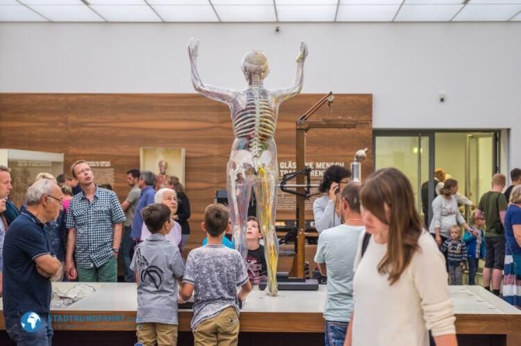 Deutsches Hygiene-Museum - Bild 4
