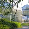 Botanischer Volkspark Blankenfelde-Pankow